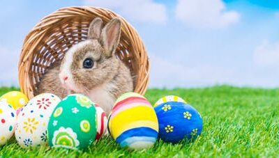 Vin Sobre Mazargues… Pâques aux petits oignons